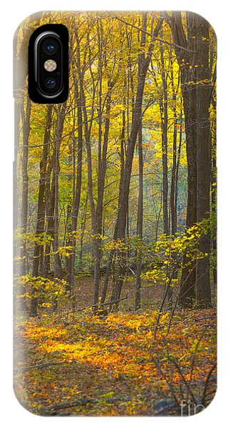 New England Fall Foliage iPhone Case - Autumn In New England by Diane Diederich