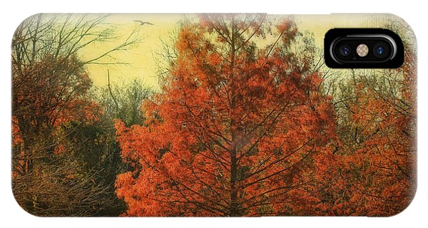 Autumn In Texas IPhone Case