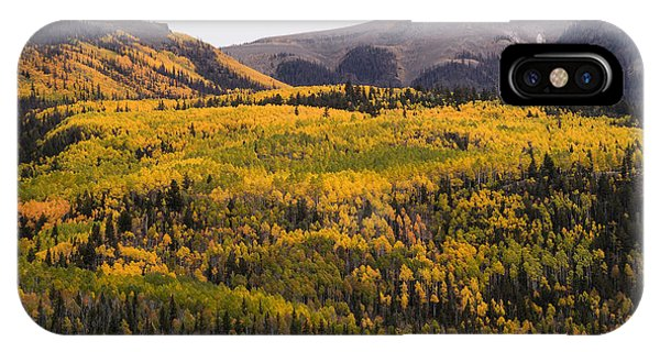 Autumn In The Colorado Mountains Phone Case by Greg Ochocki