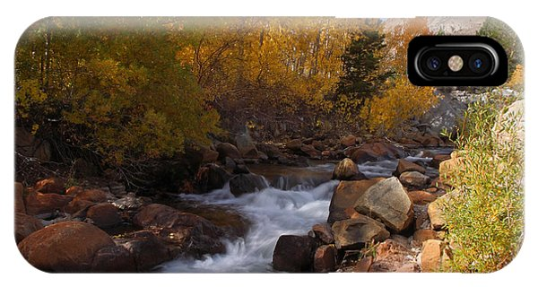 Autumn In The Eastern Sierra IPhone Case