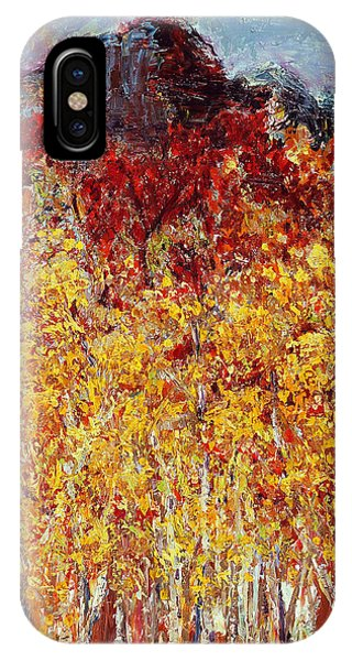 Autumn In The Pioneer Valley IPhone Case