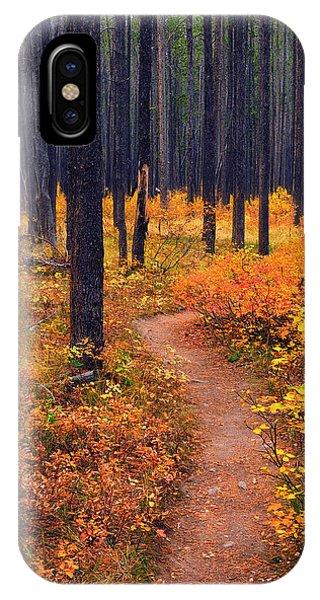 Autumn In Yellowstone IPhone Case