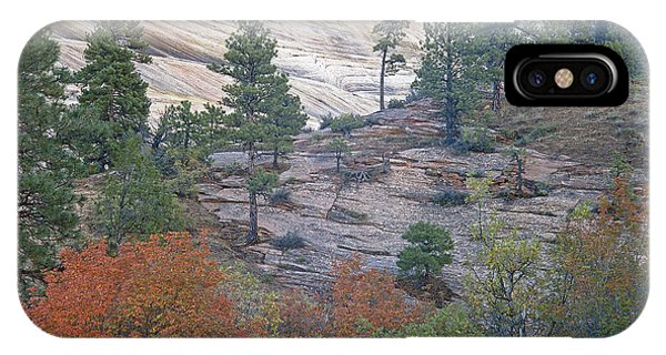 Autumn In Zions National Park IPhone Case
