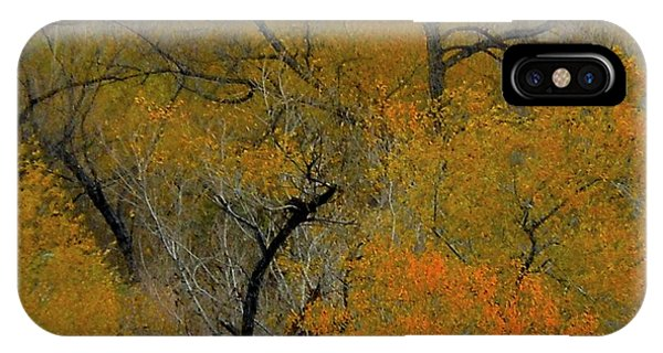 Autumn Intrigue IPhone Case