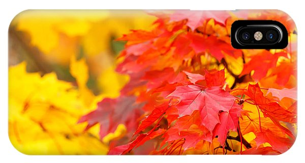 Autumn Is Beautiful IPhone Case