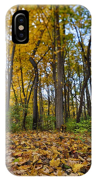 IPhone Case featuring the photograph Autumn Is Here by Sebastian Musial