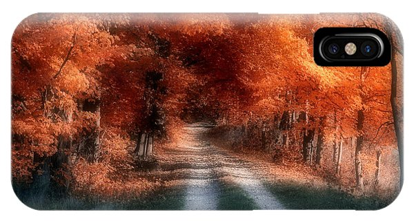 Foliage iPhone Case - Autumn Lane by Tom Mc Nemar