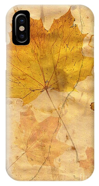 Autumn Leaf In Grunge Style IPhone Case