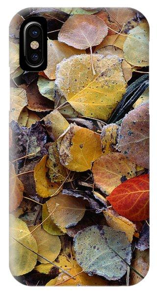 Autumn Leaf Puzzle IPhone Case