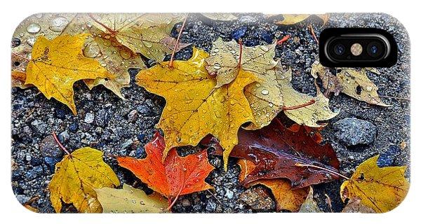 Autumn Leaves In Rain IPhone Case