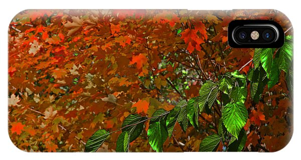 Autumn Leaves In Red And Green IPhone Case