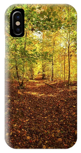 Autumn Leaves Pathway  IPhone Case