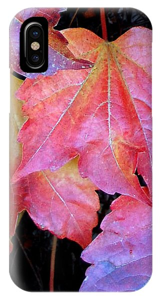 Autumn Leaves Up Close IPhone Case