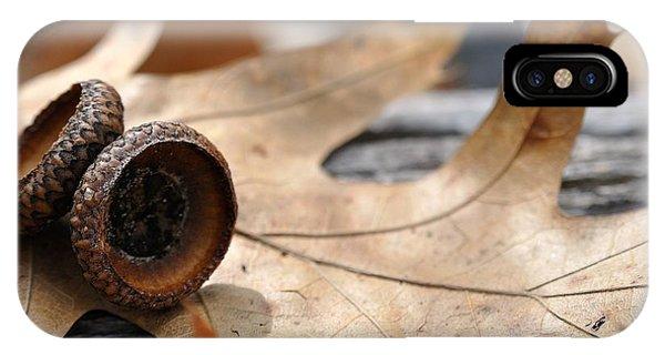Autumn Leaves With Acorn Caps 001 IPhone Case