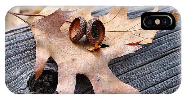 Autumn Leaves With Acorn Caps 003 IPhone Case