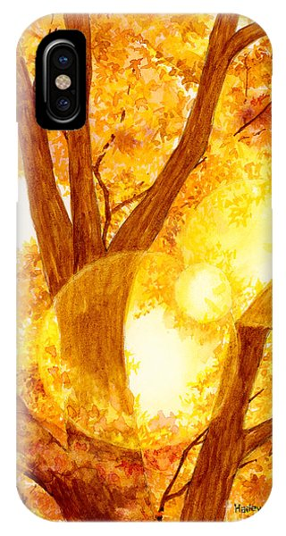 Back iPhone Case - Autumn Light by Hailey E Herrera