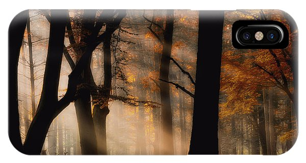 Fog Mist iPhone Case - Autumn Light by Jan Paul Kraaij