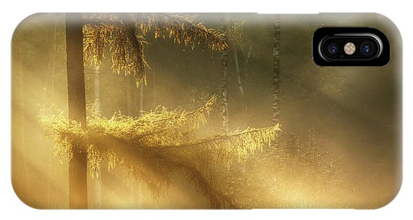 Beam iPhone Case - Autumn Light by Maurice Mies