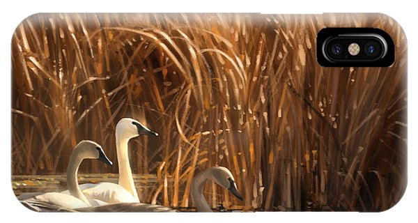 Swan iPhone X Case - Autumn Light- Trumpeter Swans by Aaron Blaise