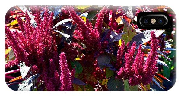 Autumn Magenta Jewel Alstede Farm IPhone Case