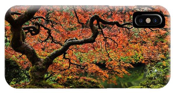 Autumn Magnificence IPhone Case