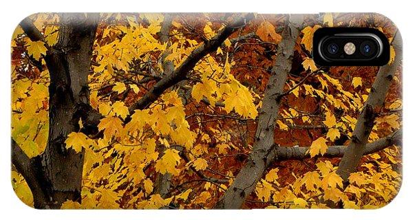 Autumn Moods 21 IPhone Case