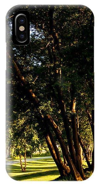 Autumn Morning Stroll IPhone Case