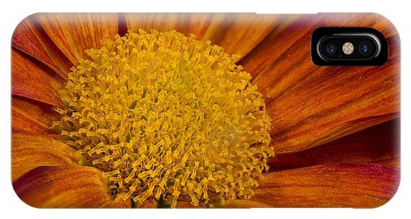 Autumn Mum IPhone Case