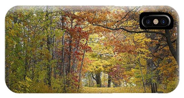 Autumn Nature Trail IPhone Case