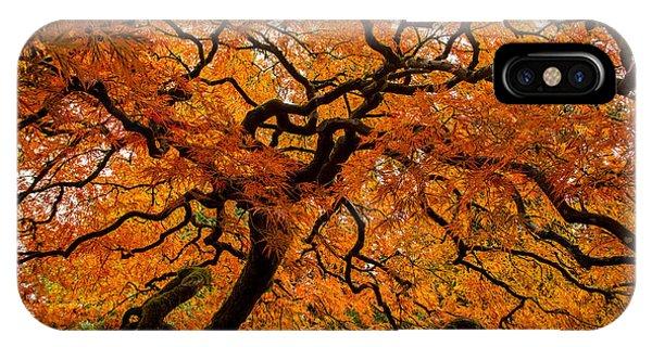 Autumn Network IPhone Case