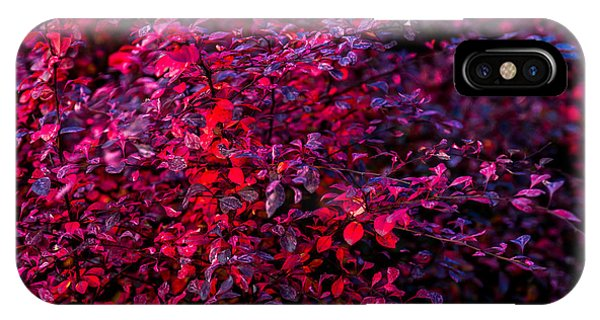 Violet Flame iPhone Case - Autumn On Fire by Alexander Senin