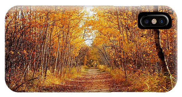 Autumn On The Harte Trail IPhone Case