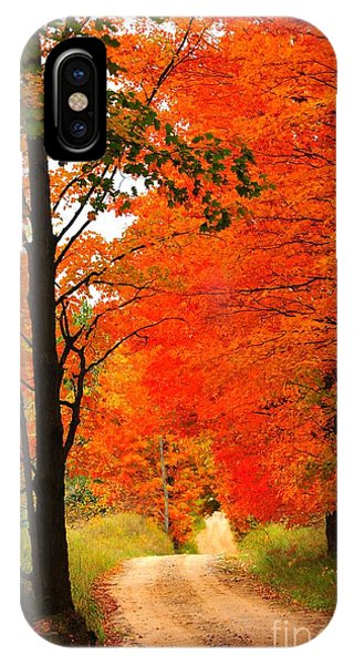 Autumn Orange 2 IPhone Case