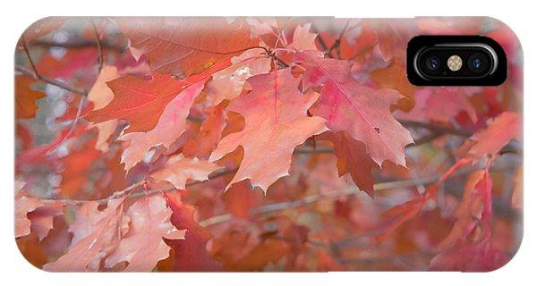 Autumn Paintbrush IPhone Case