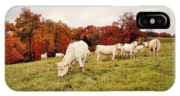 Autumn Pastures IPhone Case