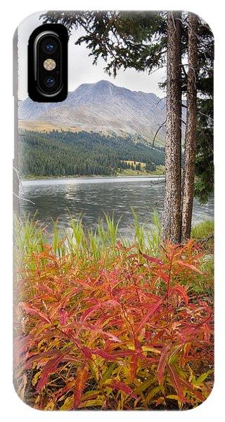 Autumn Quandry IPhone Case