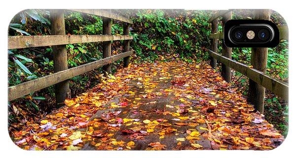 Autumn Rain At Joyce Kilmer Memorial Forest IPhone Case