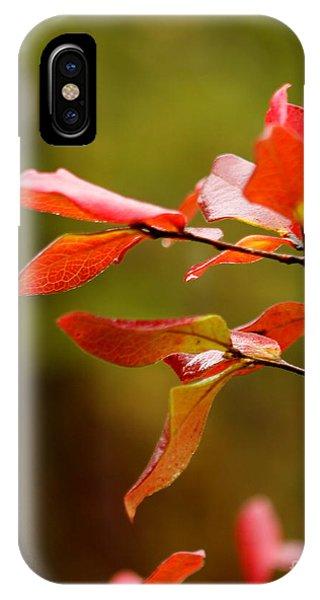 Autumn Raindrop IPhone Case