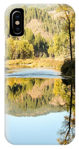 Autumn Reflections 5 Phone Case by Curtis Stein