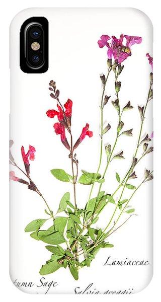 Autumn Sage IPhone Case