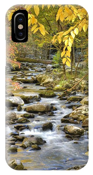 Autumn Serenity Phone Case by Mary Anne Baker