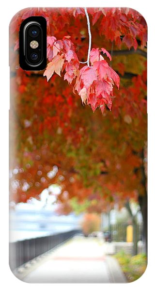 Autumn Sidewalk IPhone Case