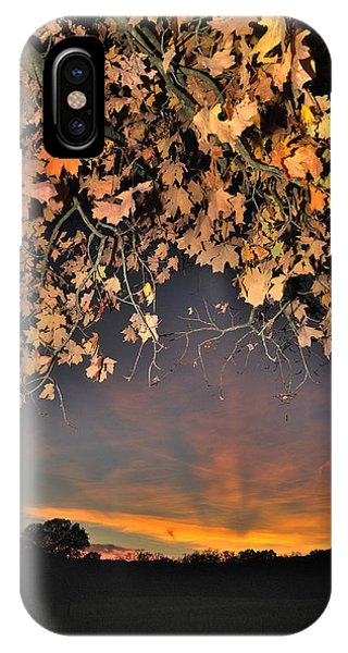 Autumn Sky And Leaves 1 IPhone Case
