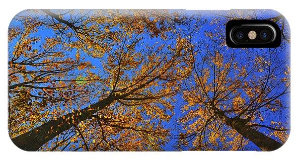 Autumn Sky Phone Case by Kathi Isserman