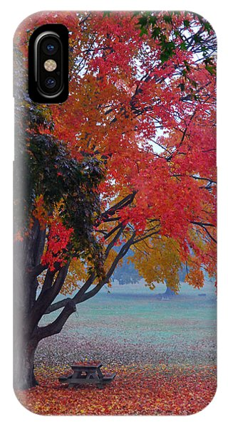 Autumn Splendor IPhone Case