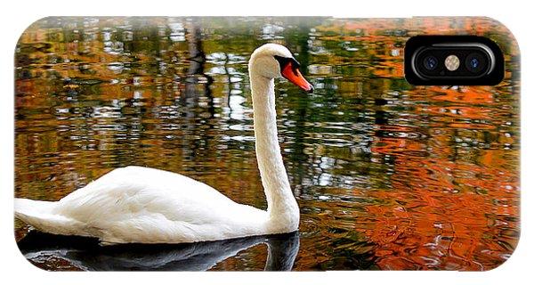 Swan iPhone Case - Autumn Swan by Lourry Legarde