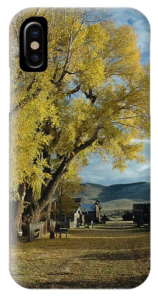Autumn Trees In Nevada City Montana IPhone Case