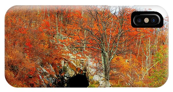 Autumn Tunnel IPhone Case