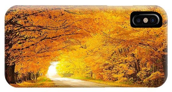 Autumn Tunnel Of Gold 8 IPhone Case