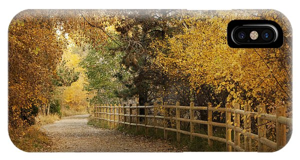 Beauty In Nature iPhone Case - Autumn Walk by Juli Scalzi